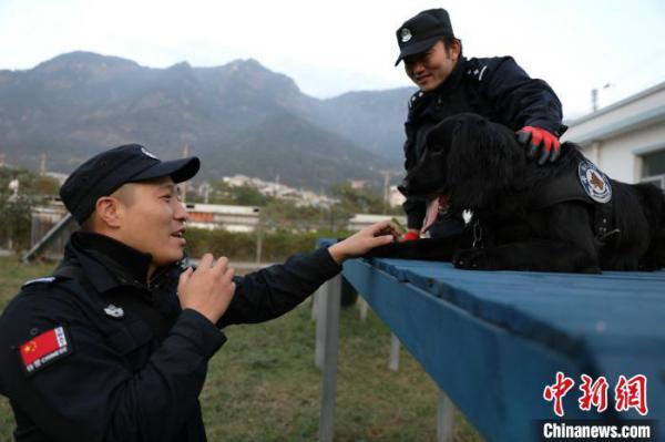 """警犬""""黑风""""已经第6年参加春运安保。图为师兄林新星指导程代星训犬。 严万星 摄"""